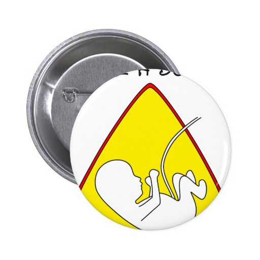 Baby on board pins