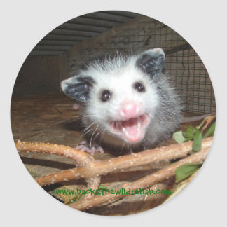 baby opossum stickers