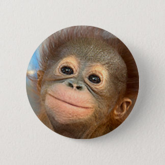 BABY ORANGUTAN BUTTON PIN