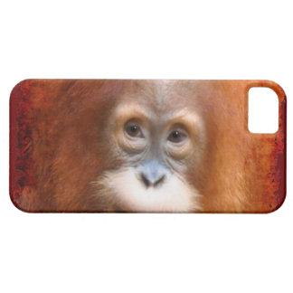 Baby Orangutan Endangered Red Ape Device Case
