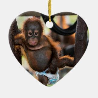 Baby Orangutan Orphan Jeffrey Junior Ceramic Ornament
