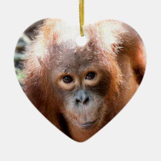 Baby Orangutan Orphan Kobe Ceramic Ornament