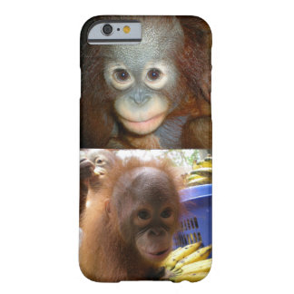 Baby Orangutans Borneo Barely There iPhone 6 Case