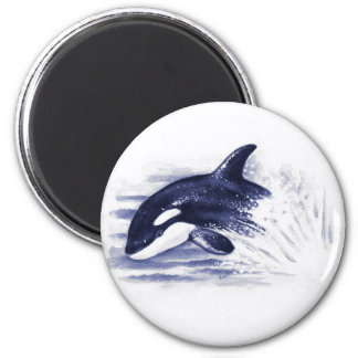 Baby Orca Jump Magnet