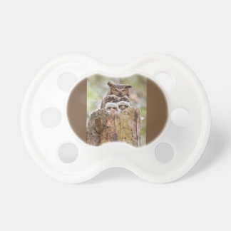 Baby Pacifier with a Hoot Owl Family!