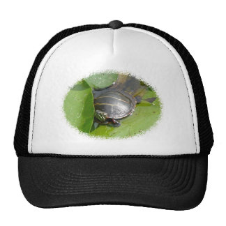Baby Painted Turtle on Lilypad Items Trucker Hat