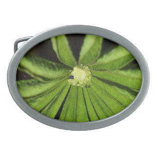 Baby Palm Plant Oval Belt Buckle