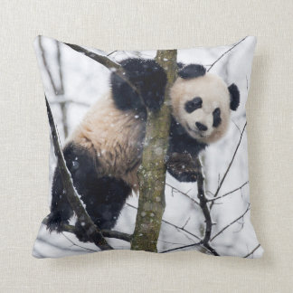 Baby Panda in Tree Throw Pillow