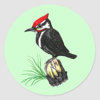 Baby Pileated Woodpecker Stickers