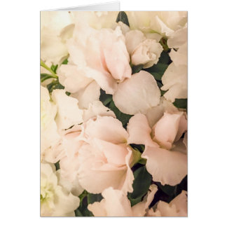 Baby Pink Note Card
