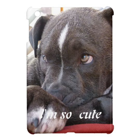 Baby Pitbull Puppies Ipad Mini Case Zazzle Ca