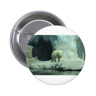 Baby Polar Bear 2 Inch Round Button