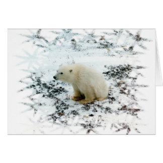 baby polar bear card