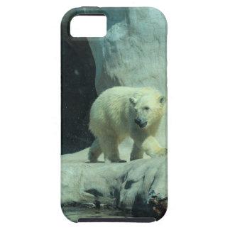 Baby Polar Bear Case For The iPhone 5
