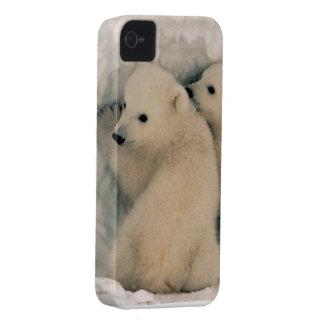 Baby Polar Bears Twins Animal Peace Love Destiny Case-Mate iPhone 4 Case