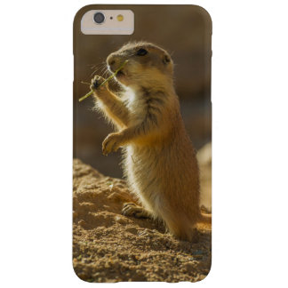 Baby prairie dog eating, Arizona Barely There iPhone 6 Plus Case