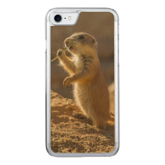 Baby prairie dog eating, Arizona Carved iPhone 7 Case