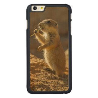 Baby prairie dog eating, Arizona Carved® Maple iPhone 6 Plus Case