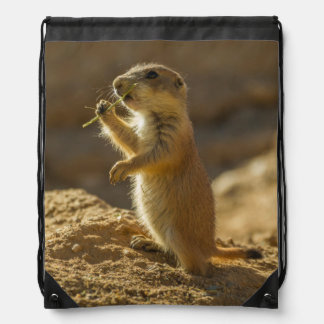 Baby prairie dog eating, Arizona Drawstring Bag
