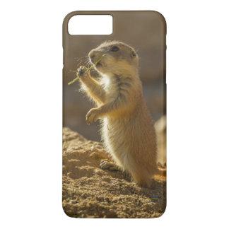 Baby prairie dog eating, Arizona iPhone 7 Plus Case