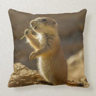 Baby prairie dog eating, Arizona Throw Pillow