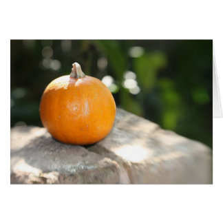 Baby Pumpkin Card