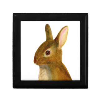 Baby Rabbit Watercolor Painting Wildlife Artwork Gift Box
