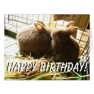 Baby Rabbits Animals Bunnies Big Greeting Card