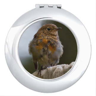Baby Robin Compact Mirror