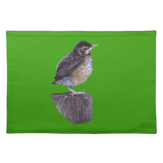 baby robin design placemats