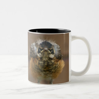Baby Robin Two-Tone Coffee Mug