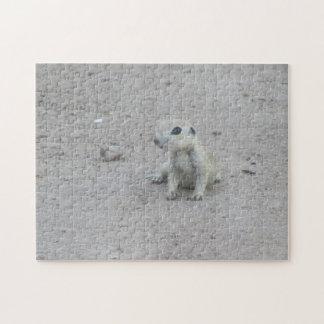 Baby Round-tail Ground Squirrel Jigsaw Puzzle