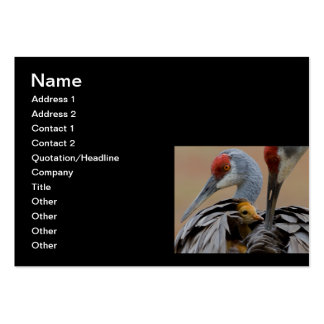 Baby Sandhill with Mom Large Business Card