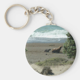 Baby sea lion and mother keychain