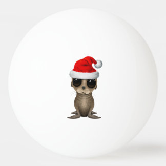 Baby Sea Lion Wearing a Santa Hat Ping Pong Ball