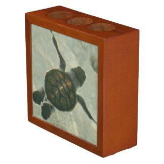 Baby Sea Turtle Swimming Out To Sea Desk Organizer