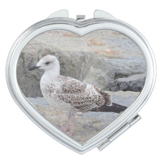 Baby Seagull  Heart Compact Mirror