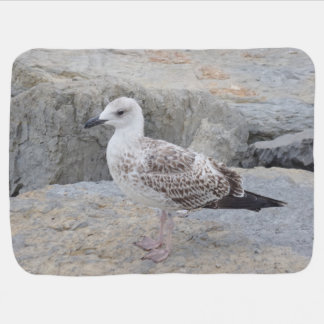 Baby Seagull on Rocks Baby Blanket