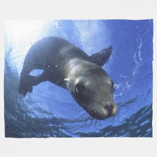 BABY SEAL FLEECE BLANKET