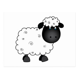 Baby Sheep For Ewe Postcard