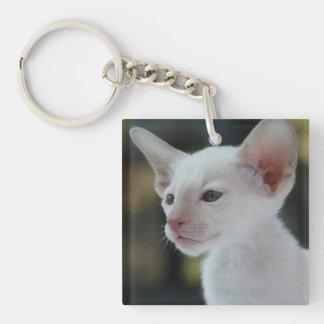 Baby Siamese Kitty Keychain