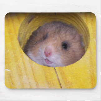 Baby Sierra Mouse Pad