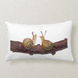 Baby Snail Talk (choose colour) Lumbar Pillow