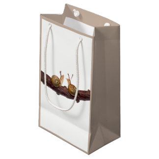 Baby Snail Talk Gift Bag
