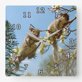 Baby Squirrels on Dogwood Square Wall Clock
