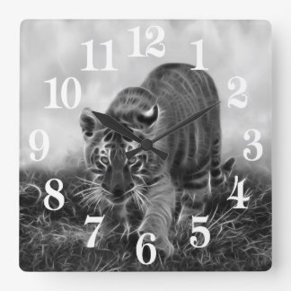 Baby Tiger stalking in Black and white Square Wall Clock