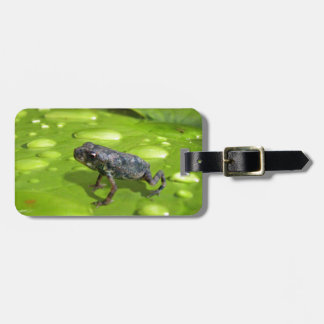 Baby Toad in Pond Luggage Tag