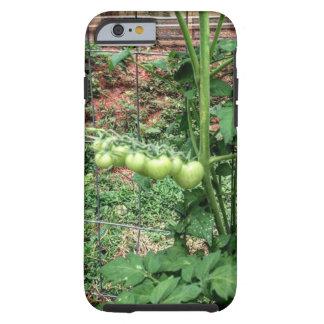 Baby Tomato Tough iPhone 6 Case