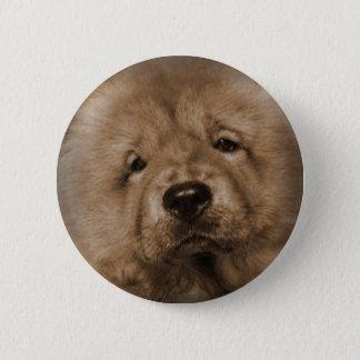 Baby Udon 2 Inch Round Button