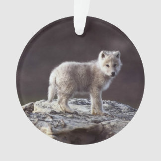 Baby Wolf Ornament